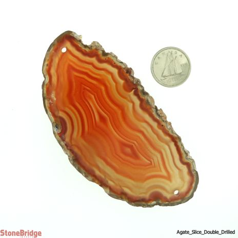 Agate Slice Double Drilled #1