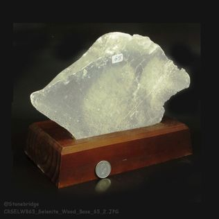 "Selenite Crystal (gypsum) on wood base Unique #65 - 7 3/4"" tall"