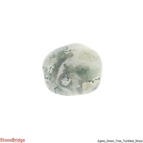 Agate Green Tree Tumbled Stone