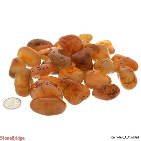 Carnelian Tumbled Stone - B Quality - 1 lb bag