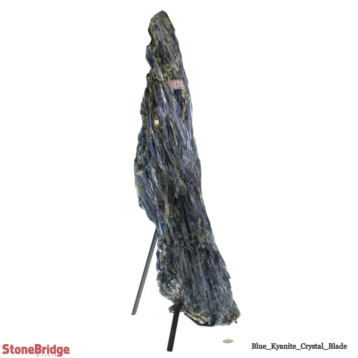 """Blue Kyanite Cluster Blade on Iron Base - Unique #5 - 26 1/4"""" Tall"""