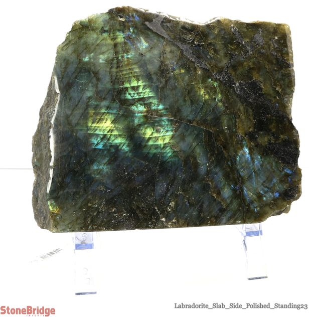 Labradorite Standing Slice - Unique #23