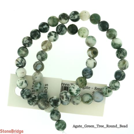 Green Tree Agate - Round Bead