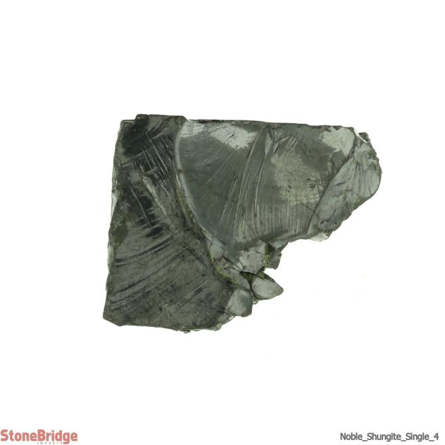 Elite Noble Shungite Rough #4