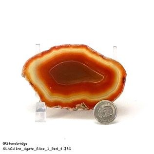 "Red Agate Slice Thin #1 - 2"" to 3"""