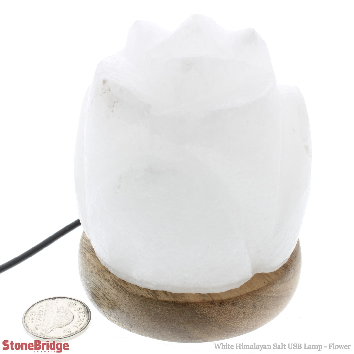 LASAUSRWfl_White Himalayan Salt USB Lamp Flower_10.jpg