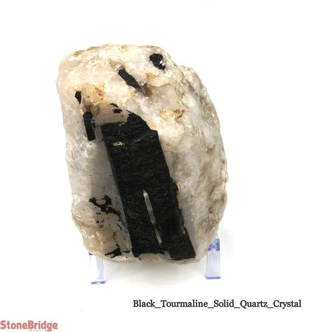 Black Tourmaline on Quartz Matrix - Unique #7