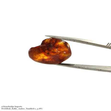 """Baltic Amber Tumbled Stone Single Piece -#1 - 3/4"""" to 1 1/2"""""""