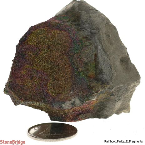 Rainbow Pyrite Geode Fragment - Quality Extra - Size #3