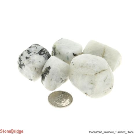 Moonstone Rainbow Tumbled Stone